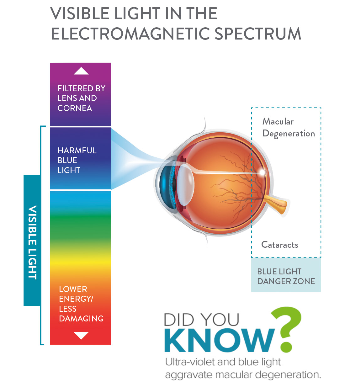 electromagnetic spectrum amd